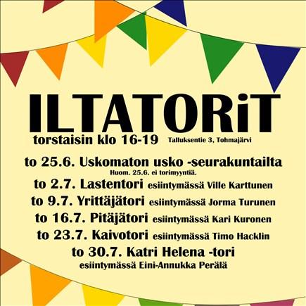 Pitäjätori, esiintyjänä Kari Kuronen